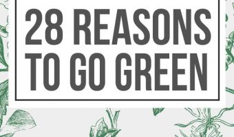 The 28 Best Reasons to Go Green you need to know