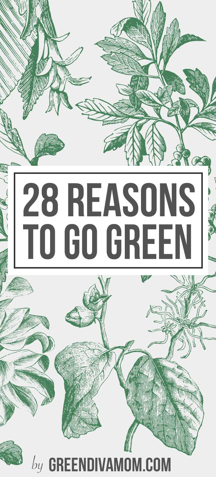 The 28 Best Reasons To Go Green You Need To Know Green Diva Mom