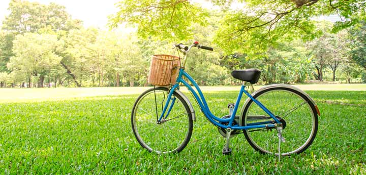 bicycle in a park